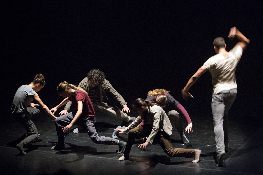 Wolf by Shechter