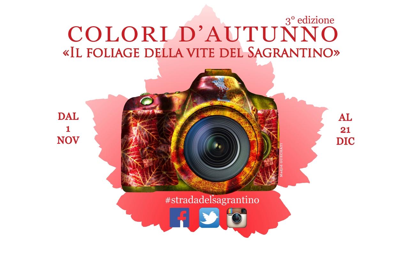 Workshop fotografico per colori d autunno il foliage for Colori del rivestimento della baracca