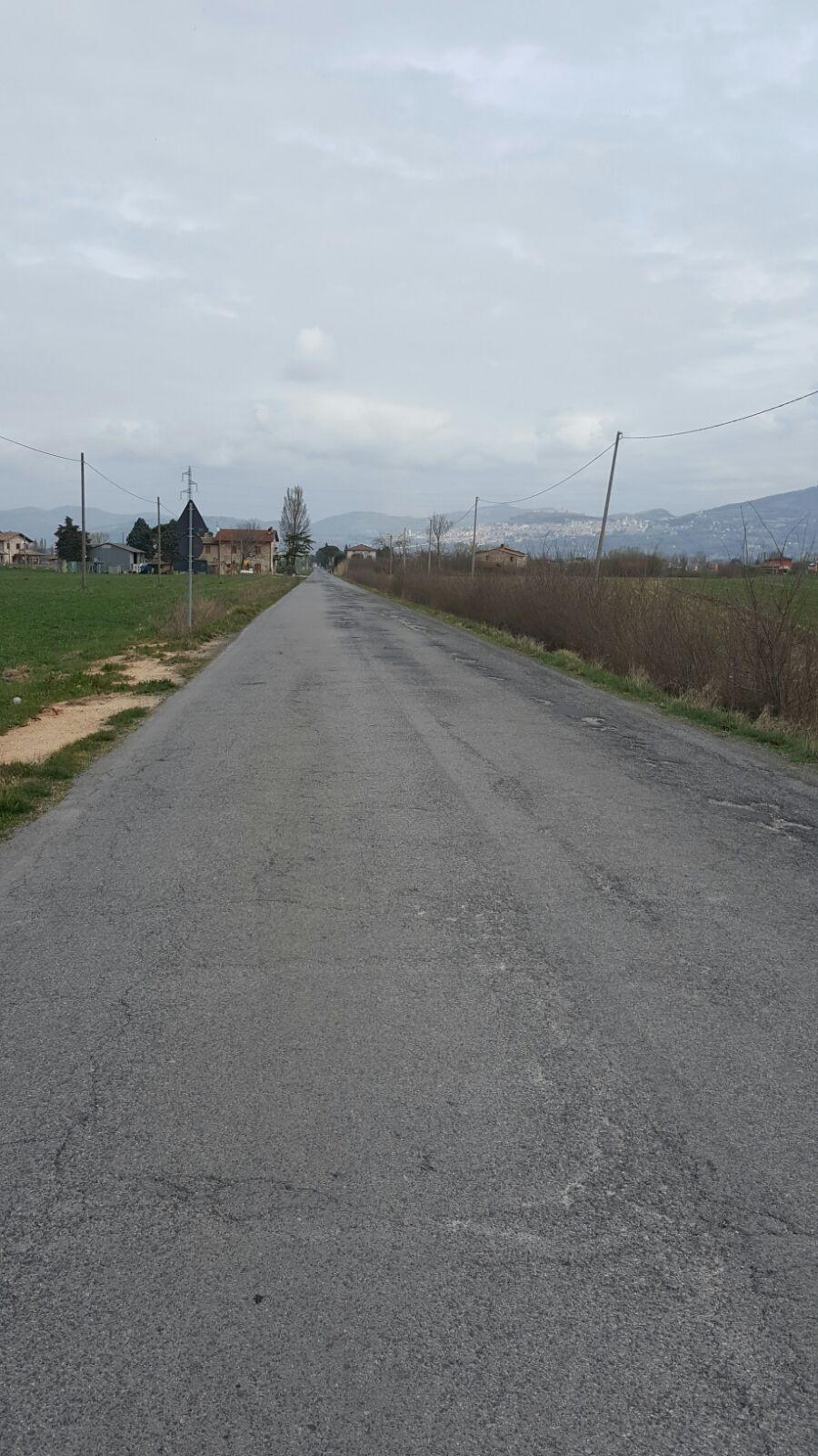 Viabilit sp 410 di cannara al via la manutenzione - Manutenzione caldaia umbria ...