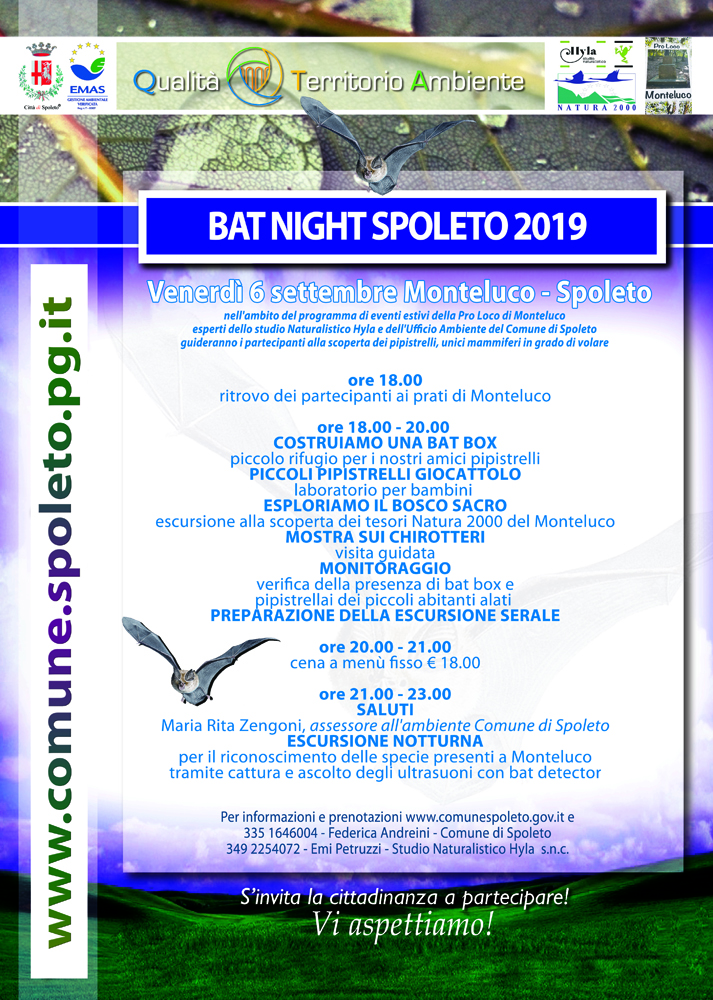 Bat Night 2019